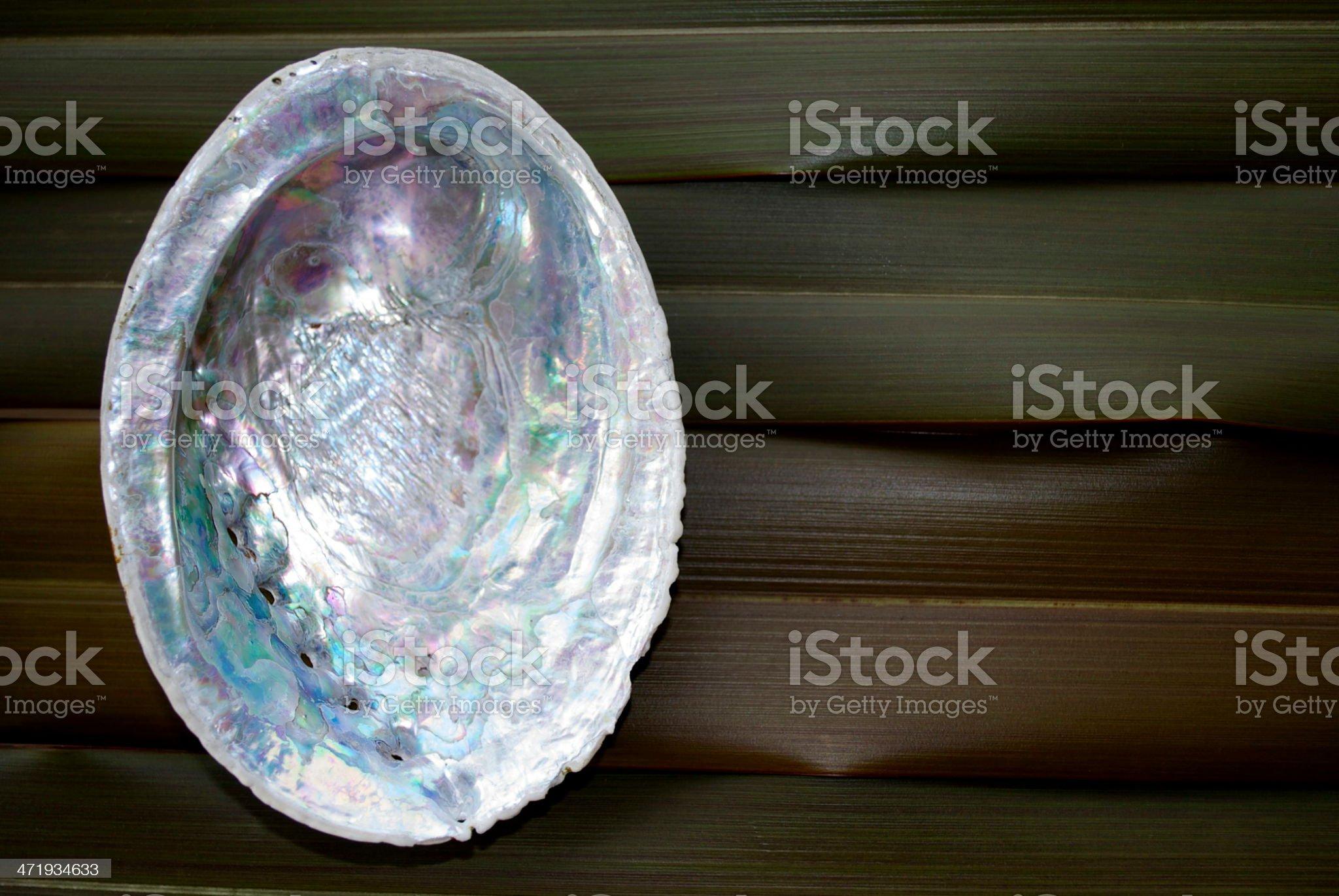 Harakeke (NZ Flax) & Paua Shell royalty-free stock photo