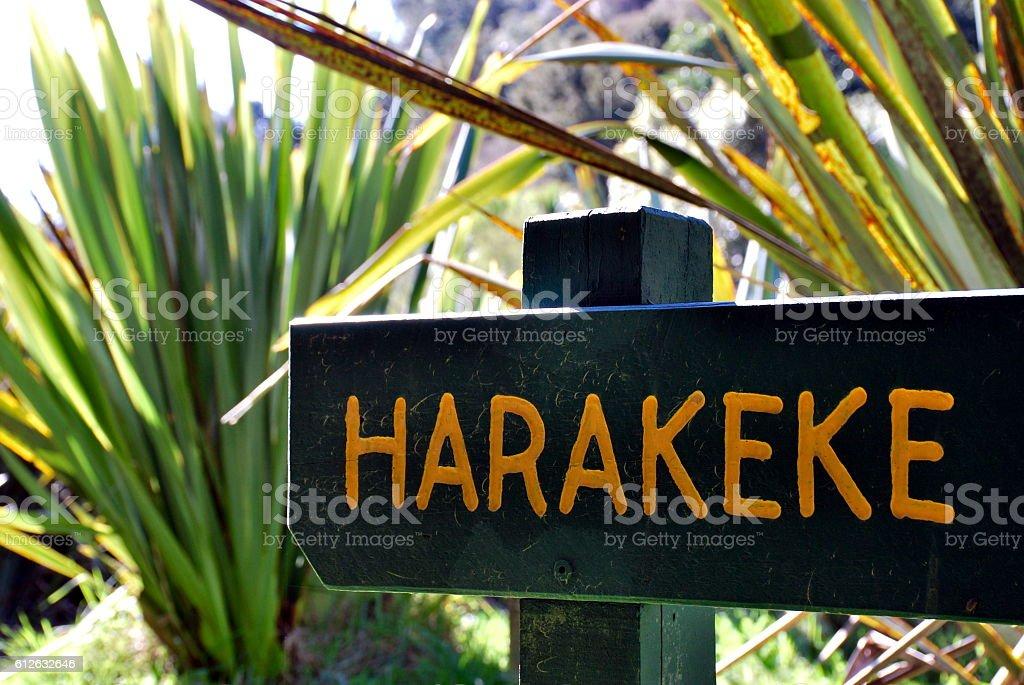 Harakeke Sign (New Zealand Flax)  in Te Reo stock photo