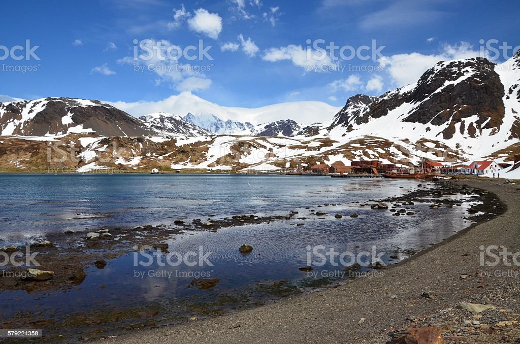 Harbor at Grytviken, South Georgia stock photo