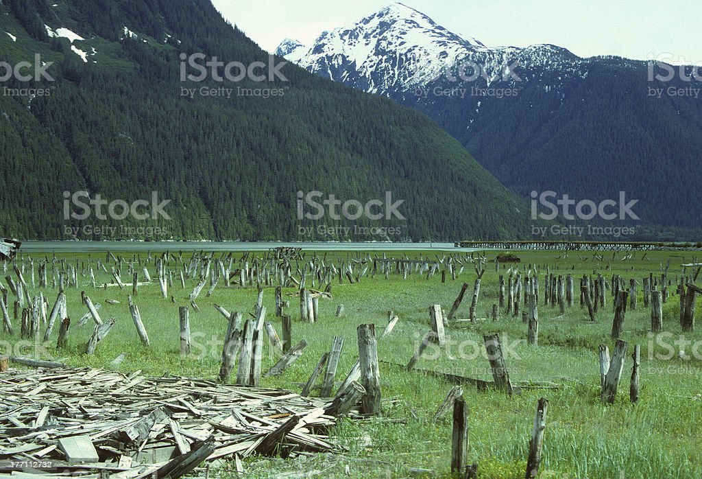 Harbor Ruins in Hyder Alaska stock photo