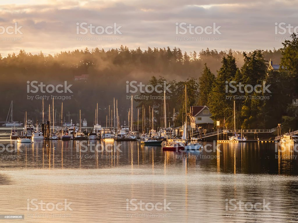 Harbor with morning fog in the Pacific Northwest stock photo