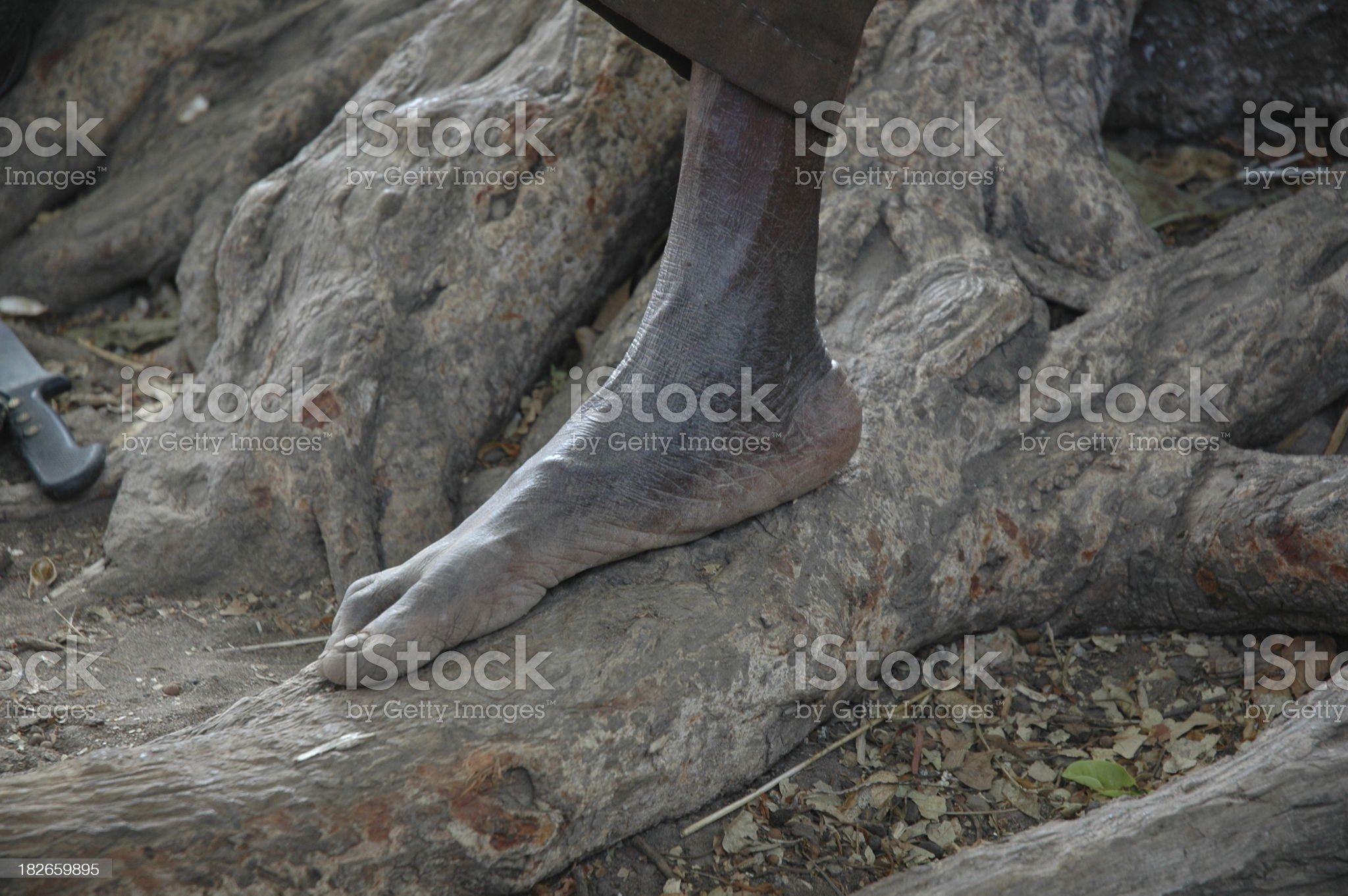 Hard Feet royalty-free stock photo