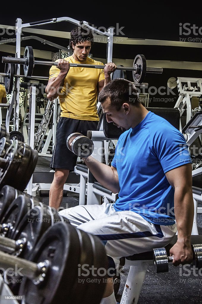 Hard gainers royalty-free stock photo