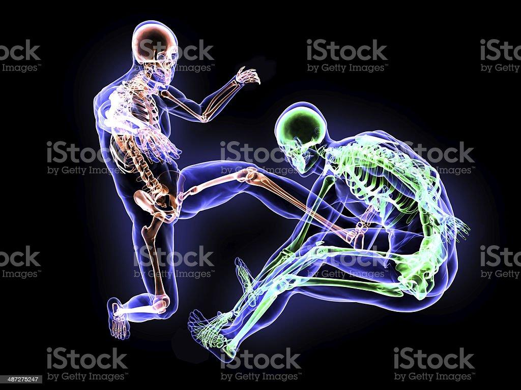 Hard Kick Anatomy stock photo