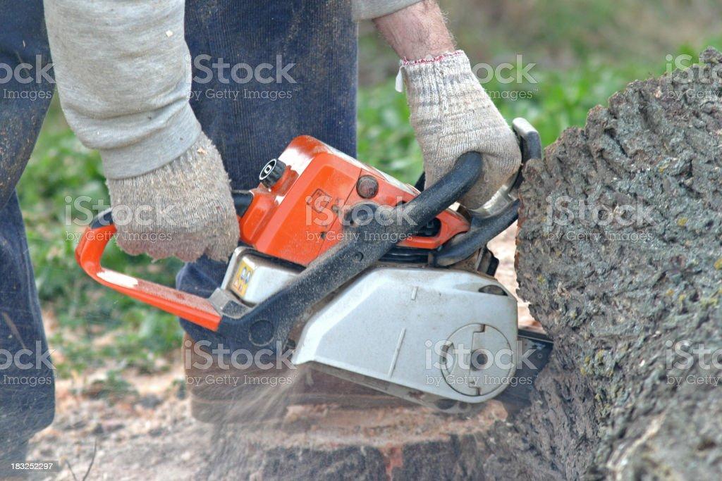 Hard work royalty-free stock photo