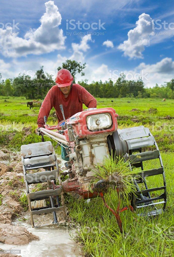 hard working asian farmer royalty-free stock photo