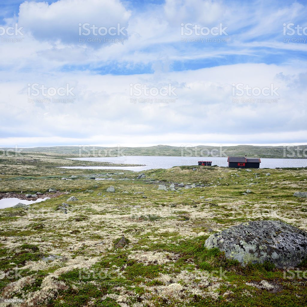 Hardangervidda National Park stock photo