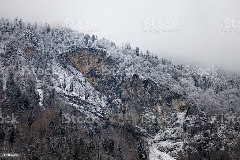 Hardermannli in Winter royalty-free stock photo