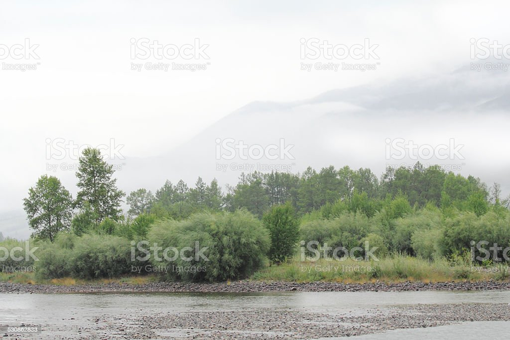 Hardly drizzling morning on the Sibirian river stock photo