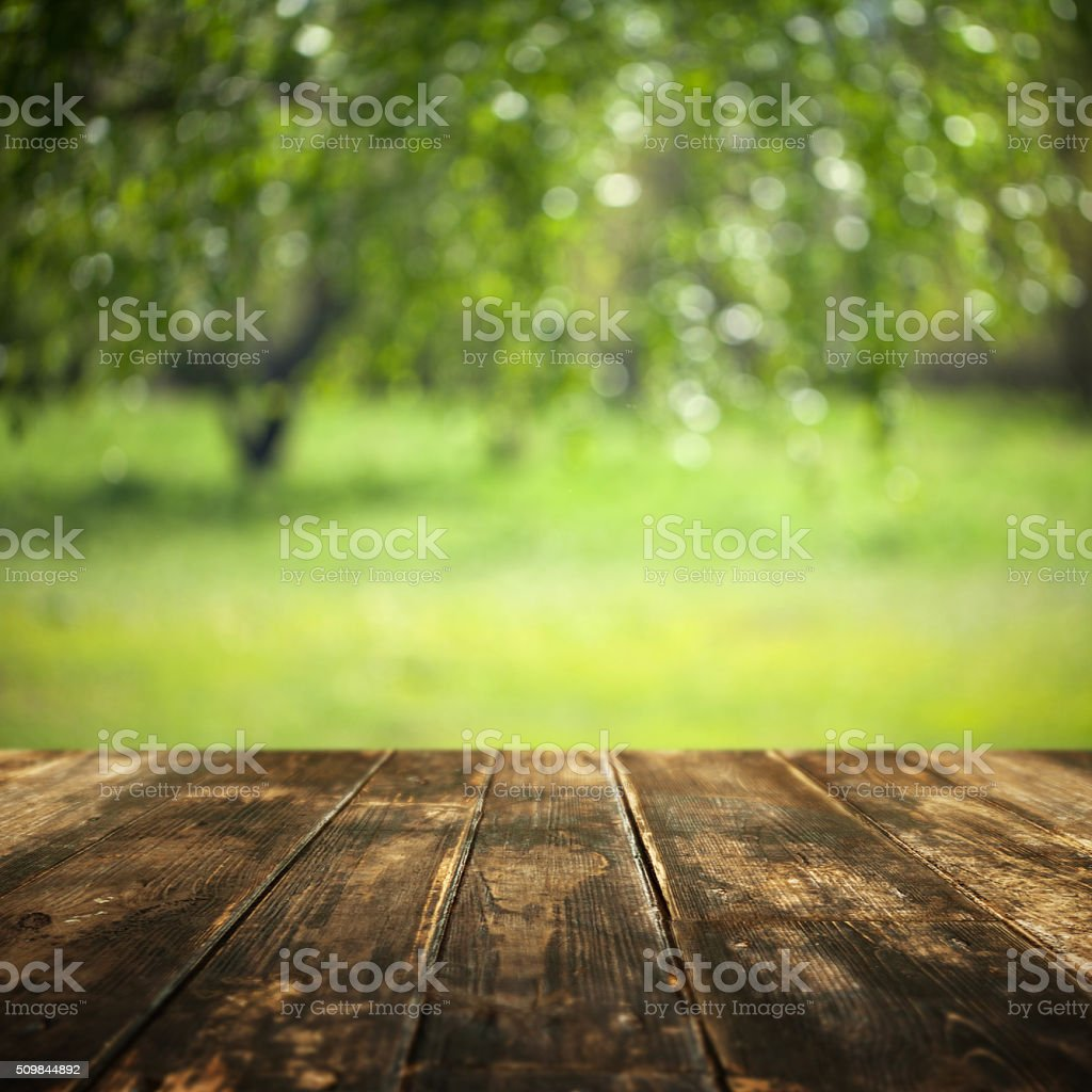 Hardwood floor and defocused summer landscape on background stock photo