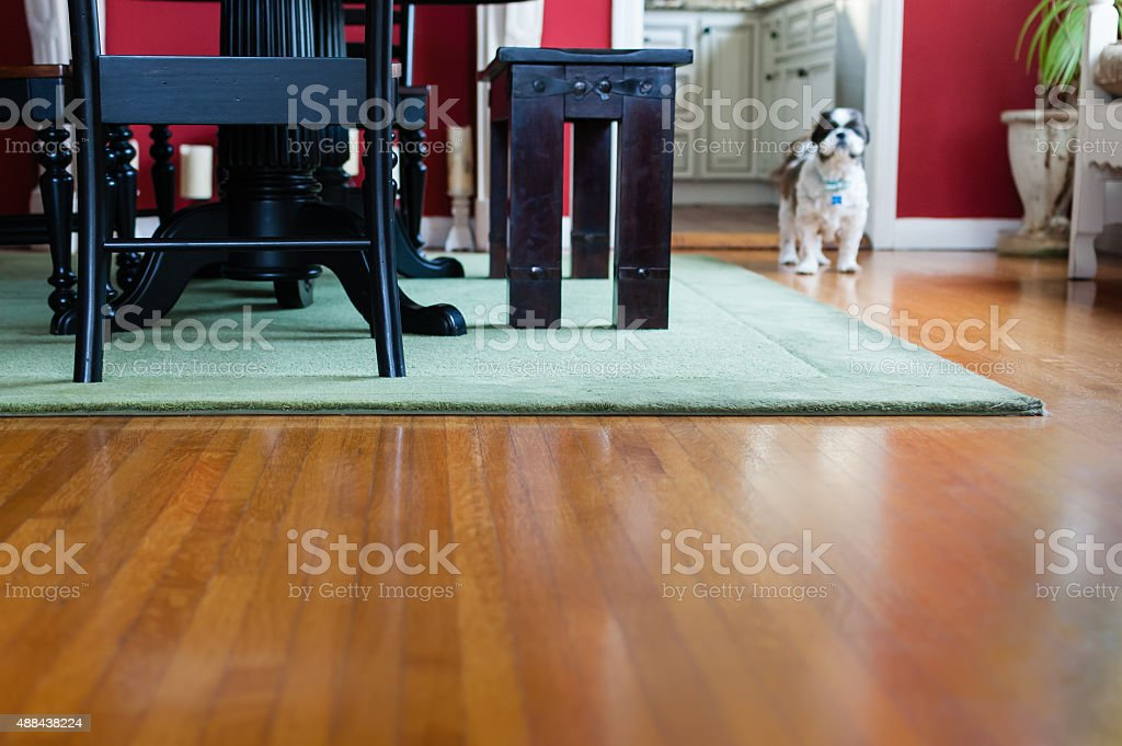 Hardwood floor in a home's dining room stock photo