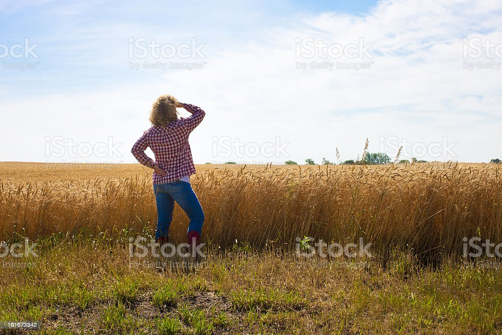 Hardworking Female Farmer Oversees Wheat Field on Midwest Family stock photo