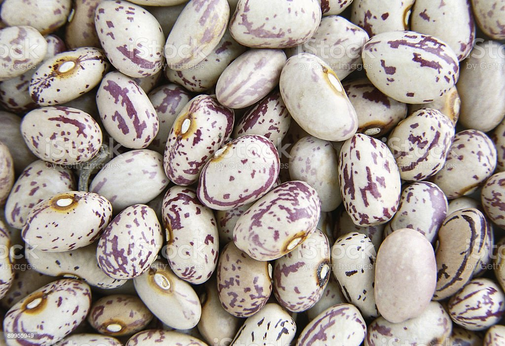 Haricot beans royalty-free stock photo
