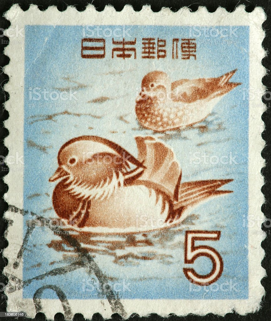harlequin ducks on an old Japanese postage stamp stock photo