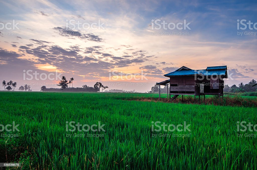 Harmonious Morning stock photo