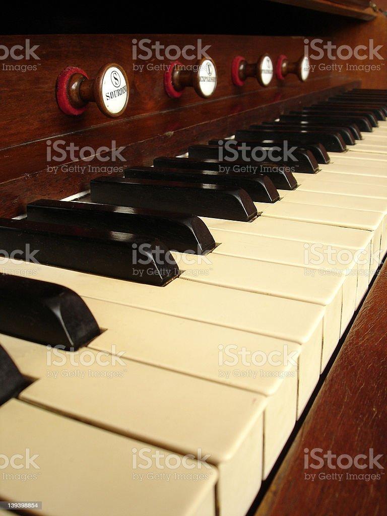 Harmonium royalty-free stock photo