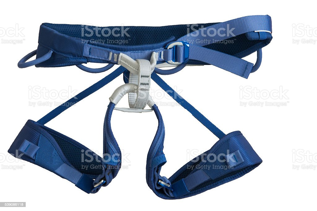 harness stock photo