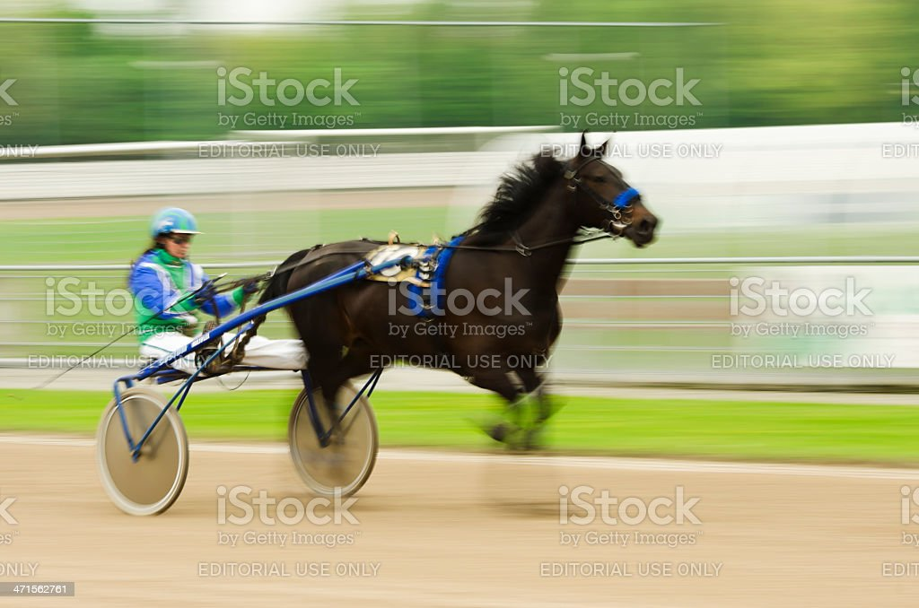 Harness racer in motion royalty-free stock photo