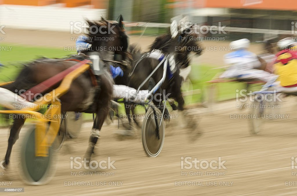 Harness racers in motion royalty-free stock photo