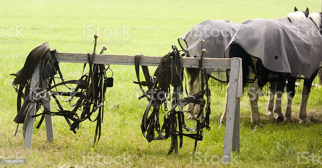 Harnesses royalty-free stock photo