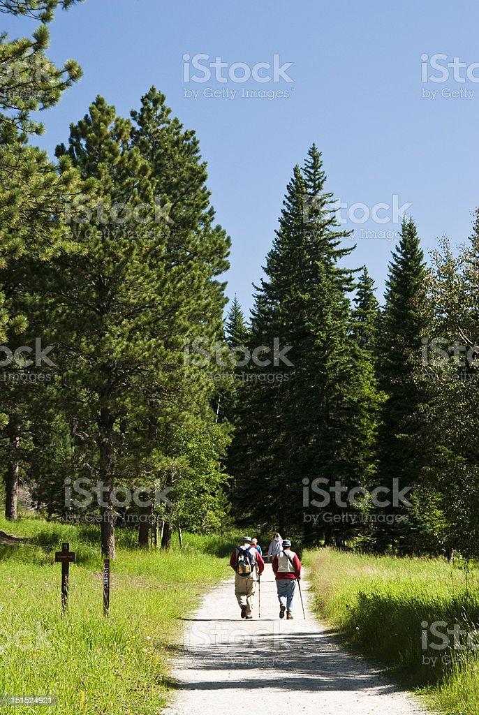 Harney Peak Trail royalty-free stock photo