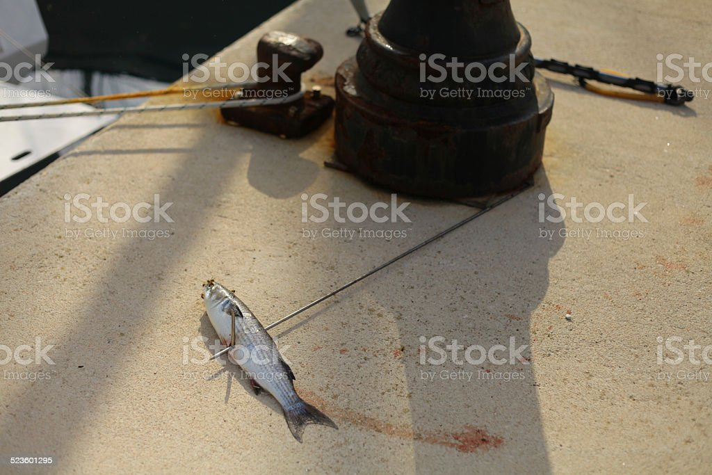 Harpoon fishing stock photo
