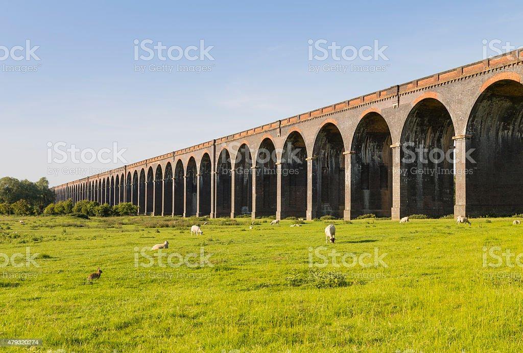 Harringworth Arches stock photo