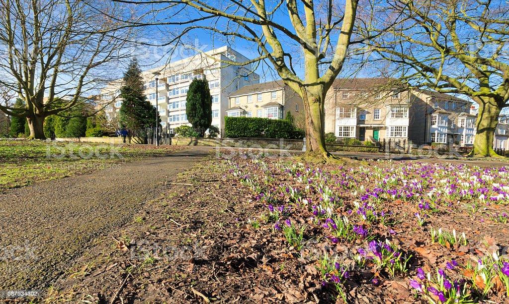 Harrogate Yorkshire England UK city spring scene stock photo
