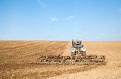 Harrowing the soil with tine harrows