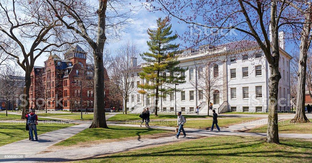 Harvard Campus in Spring stock photo