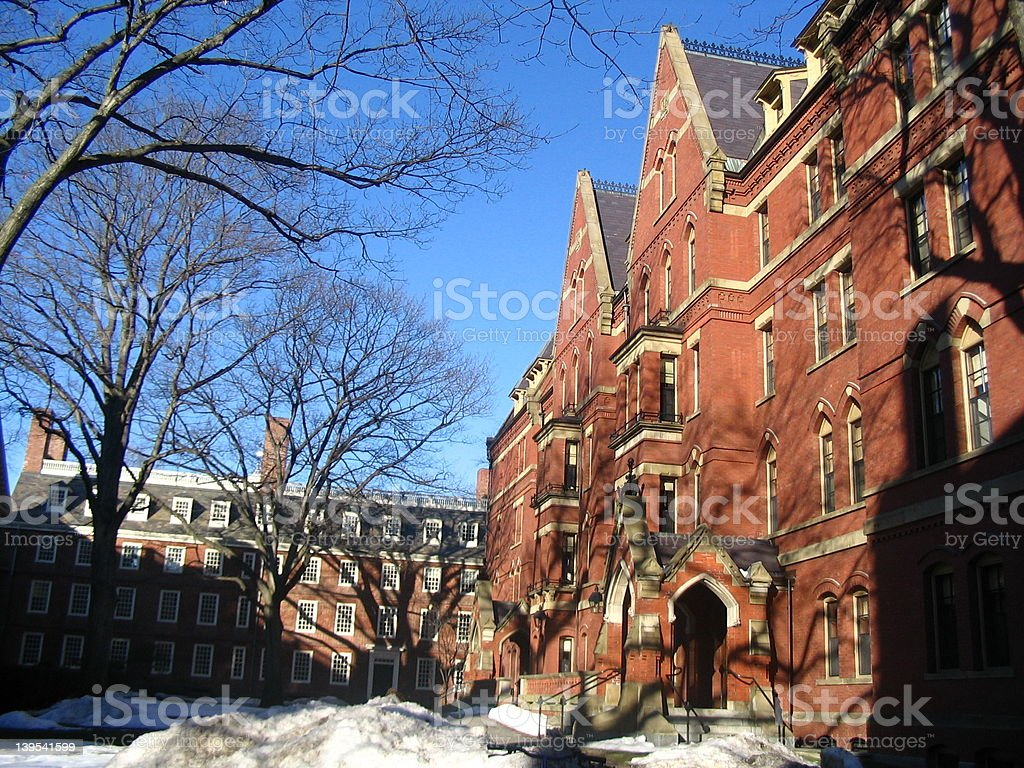 Harvard in Winter 1 royalty-free stock photo