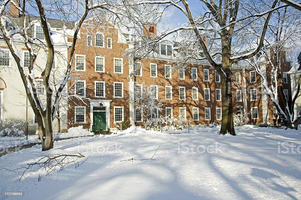 Harvard University Grounds In Winter royalty-free stock photo