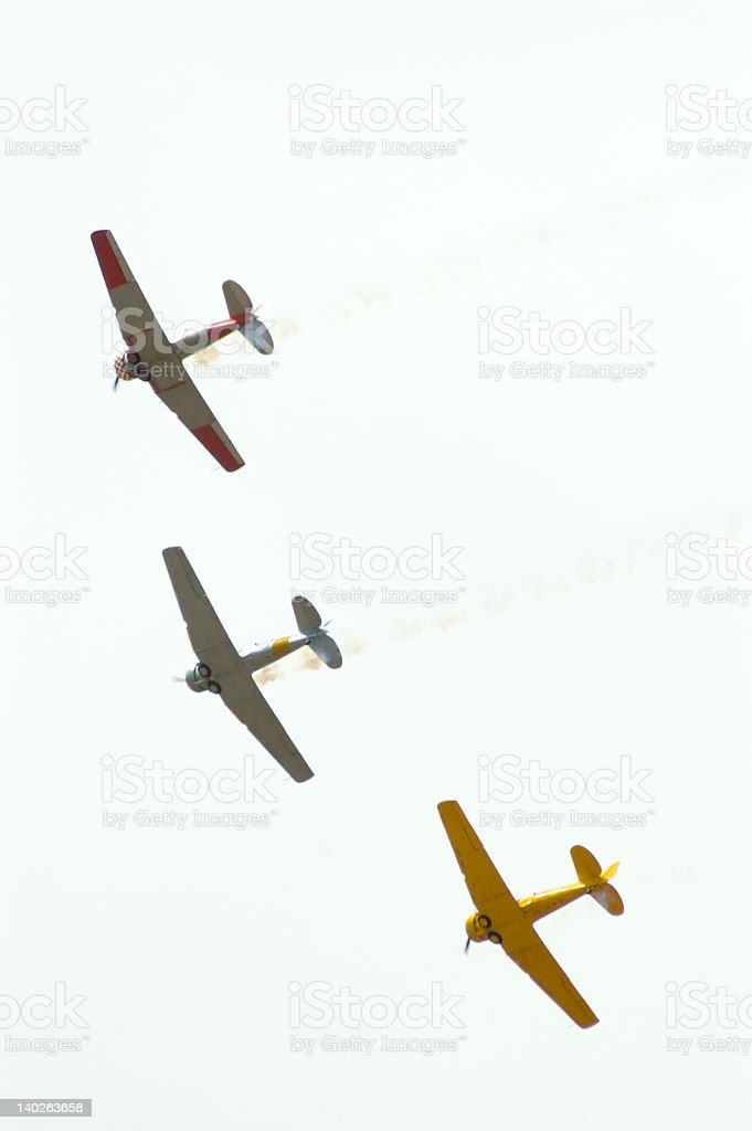 Harvards from Below royalty-free stock photo