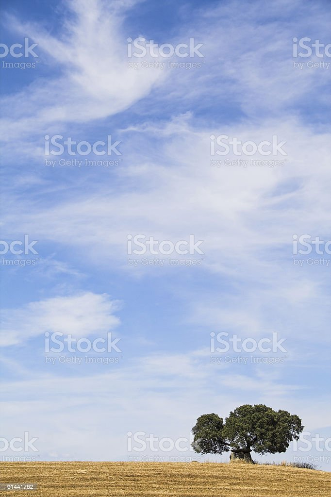 Harvest and dolmen royalty-free stock photo
