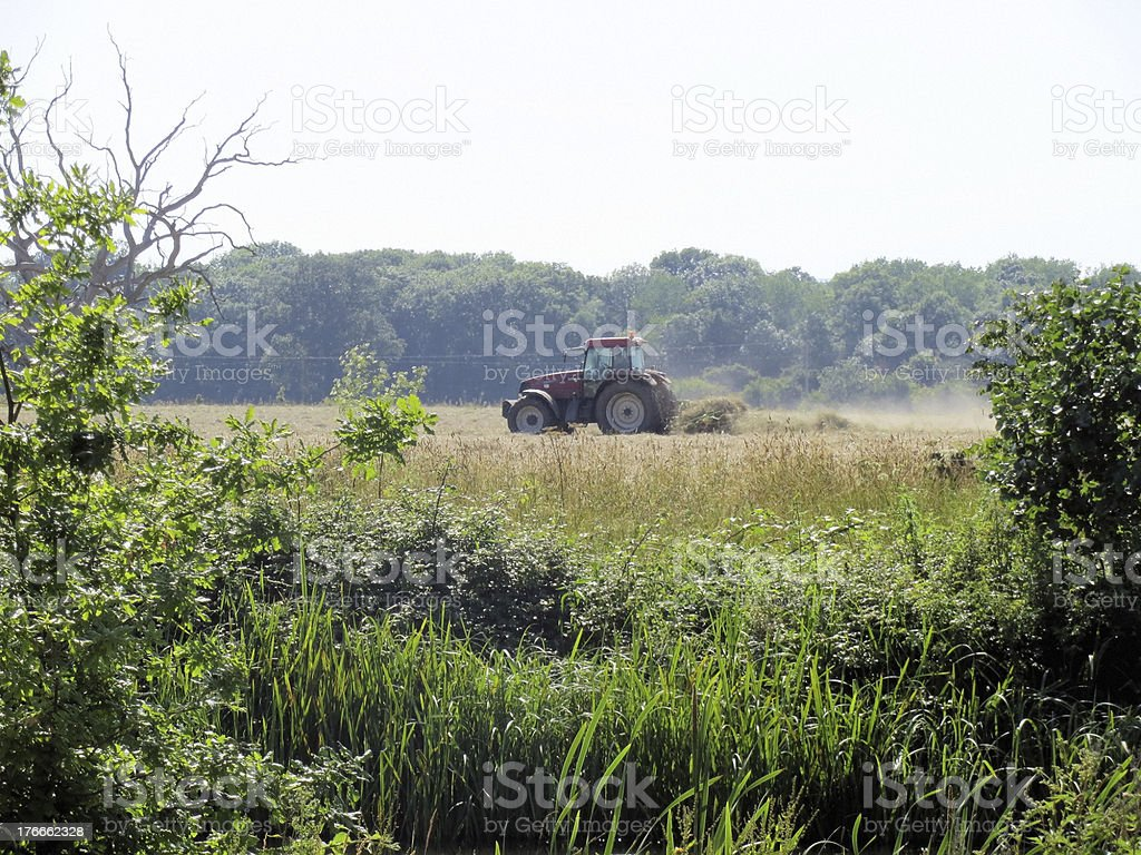 Harvest at Croome Park stock photo