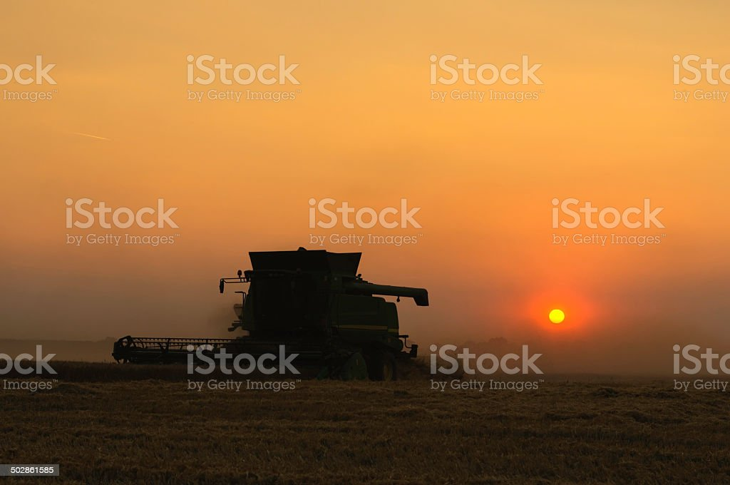 Harvest at sunset stock photo