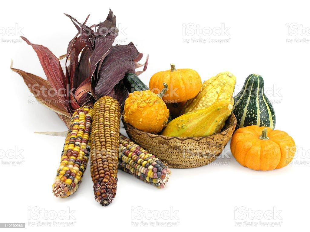 Harvest Bounty stock photo