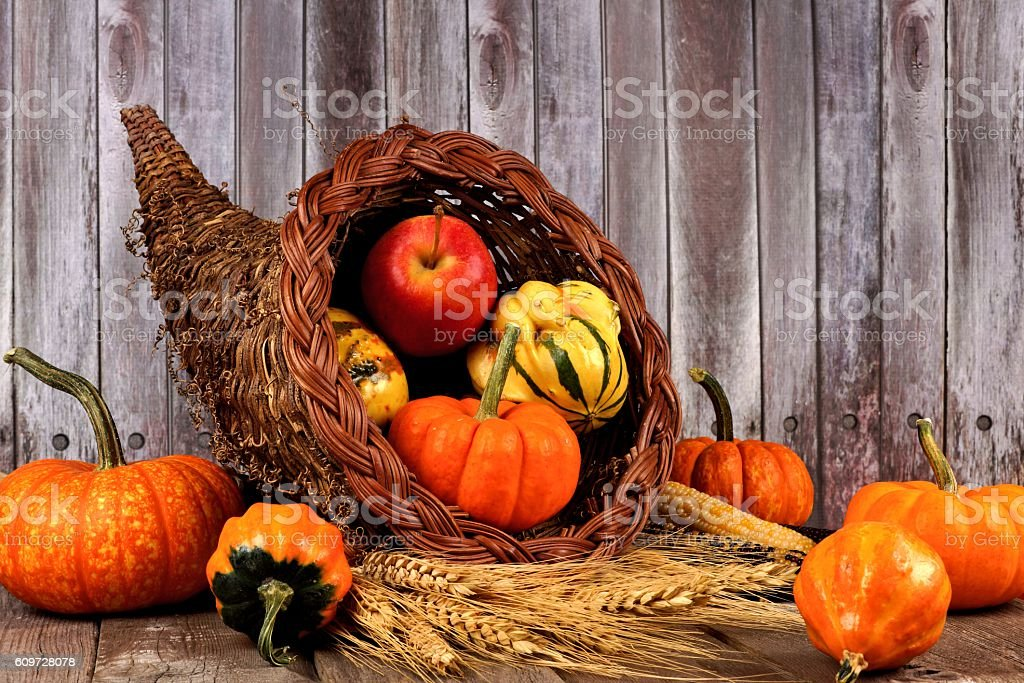 Harvest cornucopia on a rustic wood background stock photo