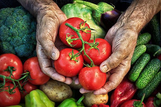 Image result for harvest hands