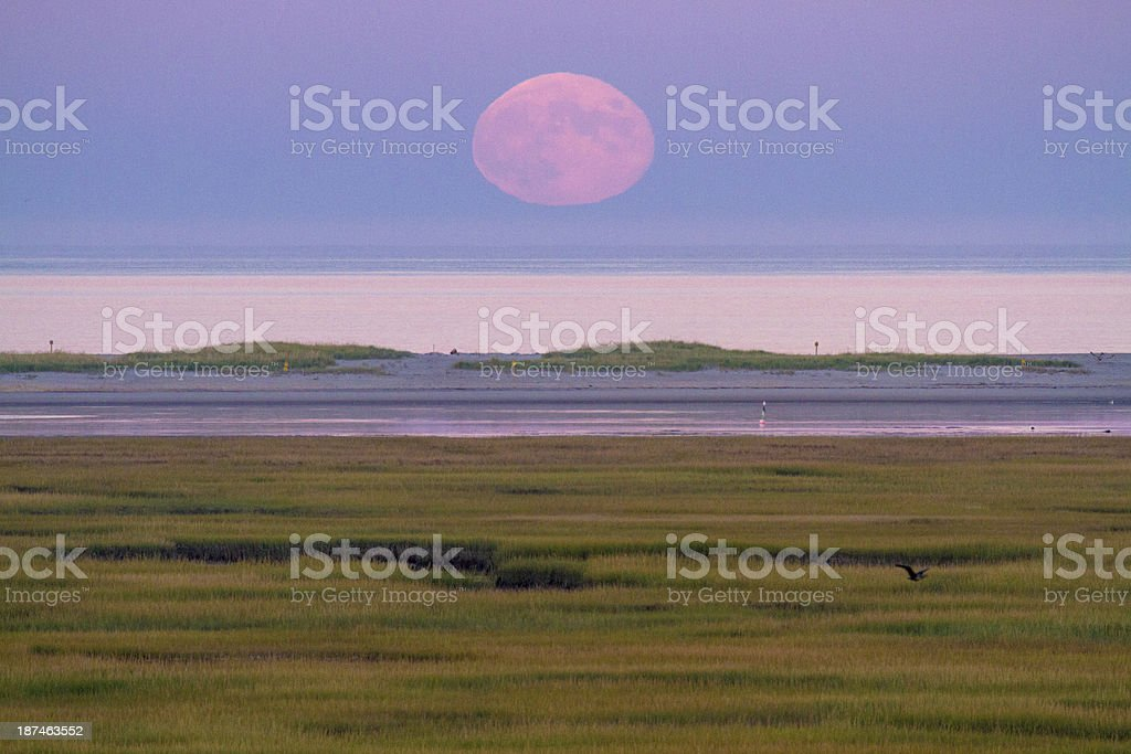 Harvest Moon Rise over Atlantic stock photo