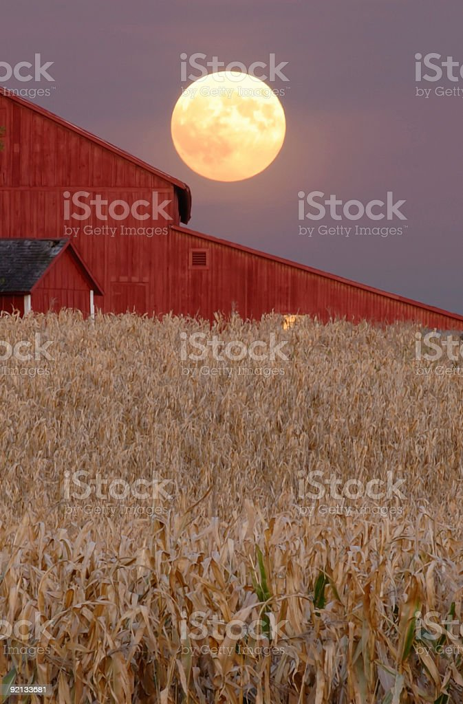 Harvest Moon Rising over Red Barn stock photo