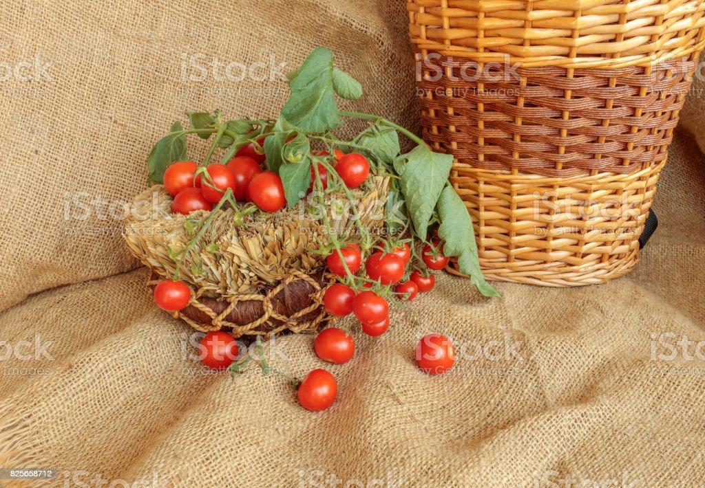 Harvest of cherry tomatoes  on jute stock photo