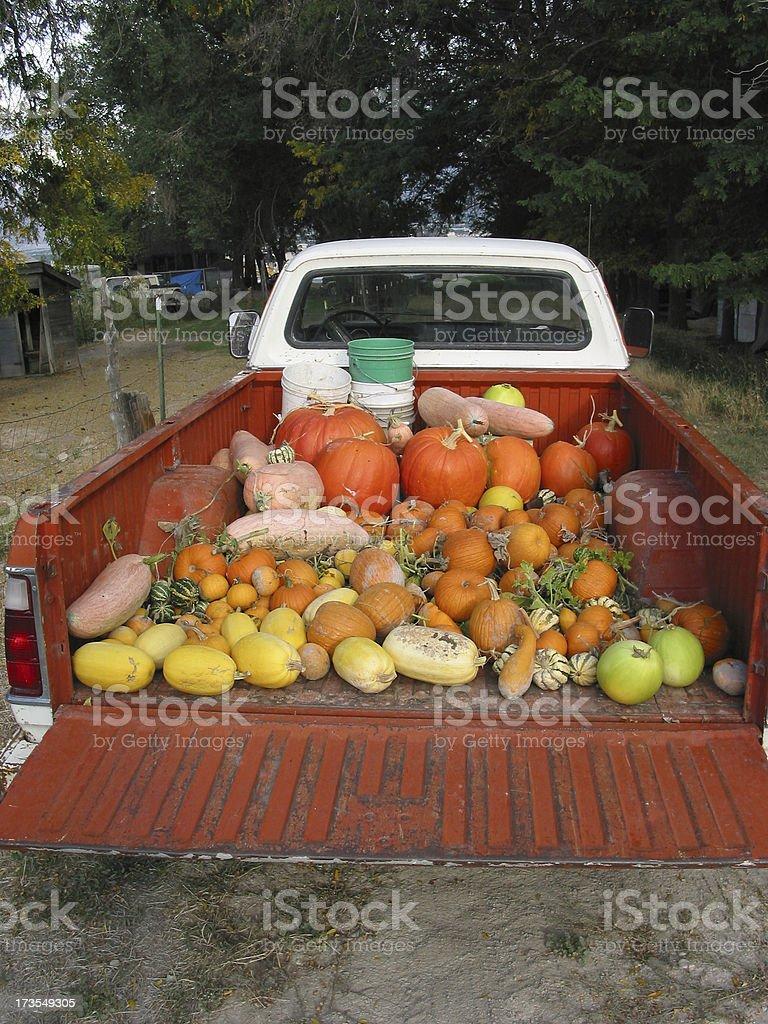 Harvest on the Farm stock photo