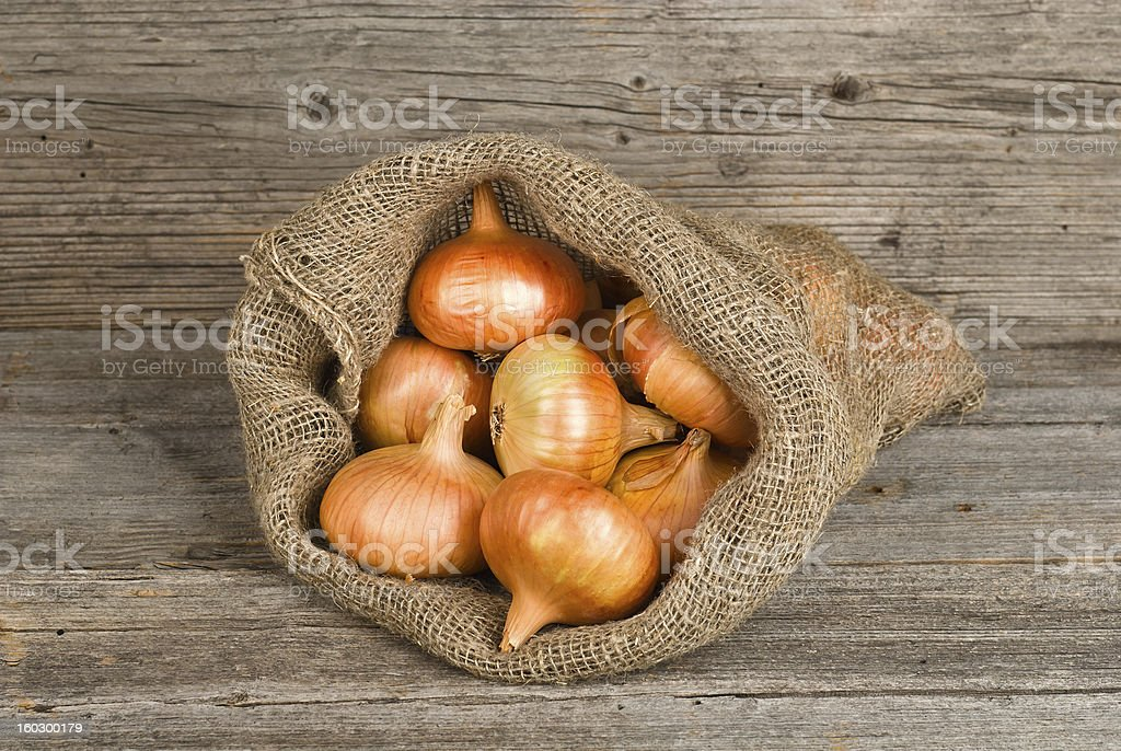 Harvest onions royalty-free stock photo