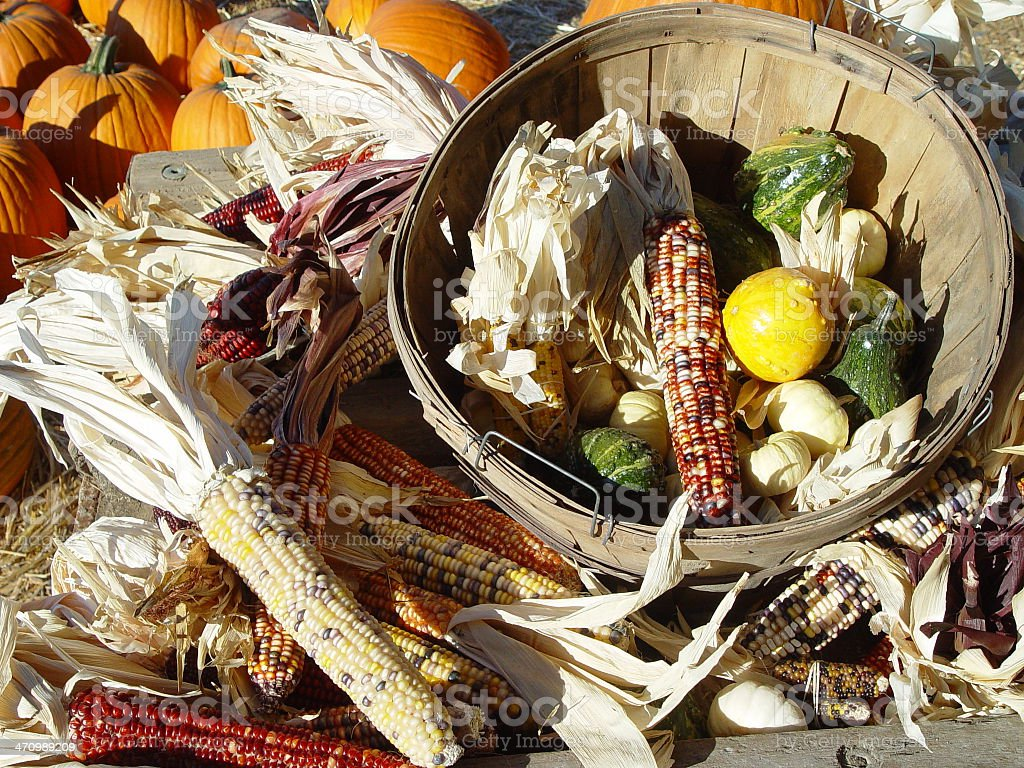 Harvest pic royalty-free stock photo