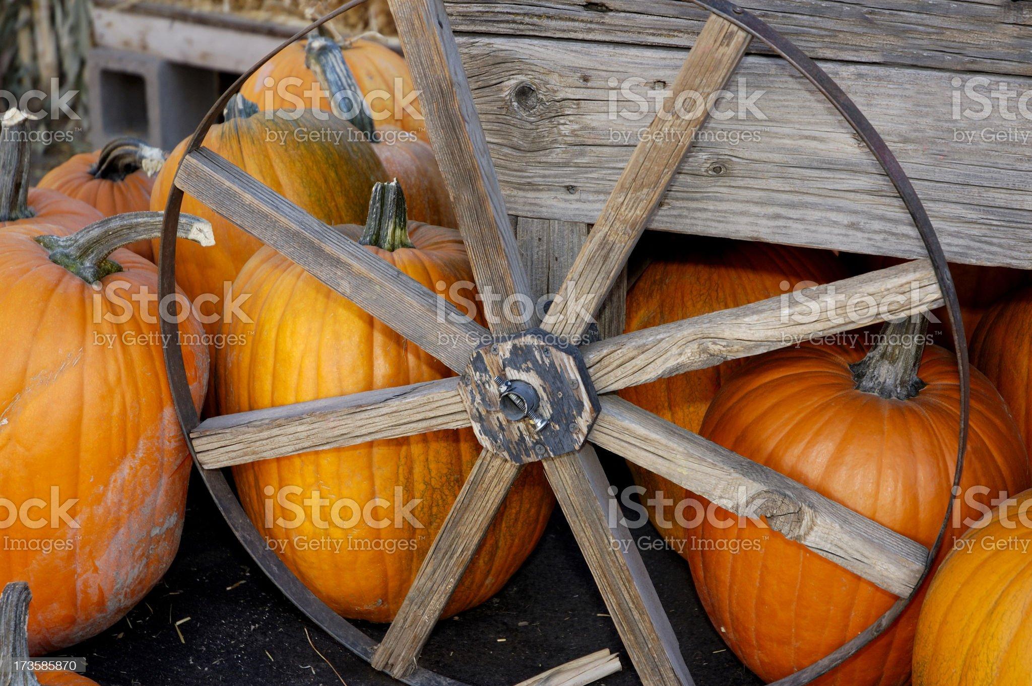 Harvest Scene royalty-free stock photo