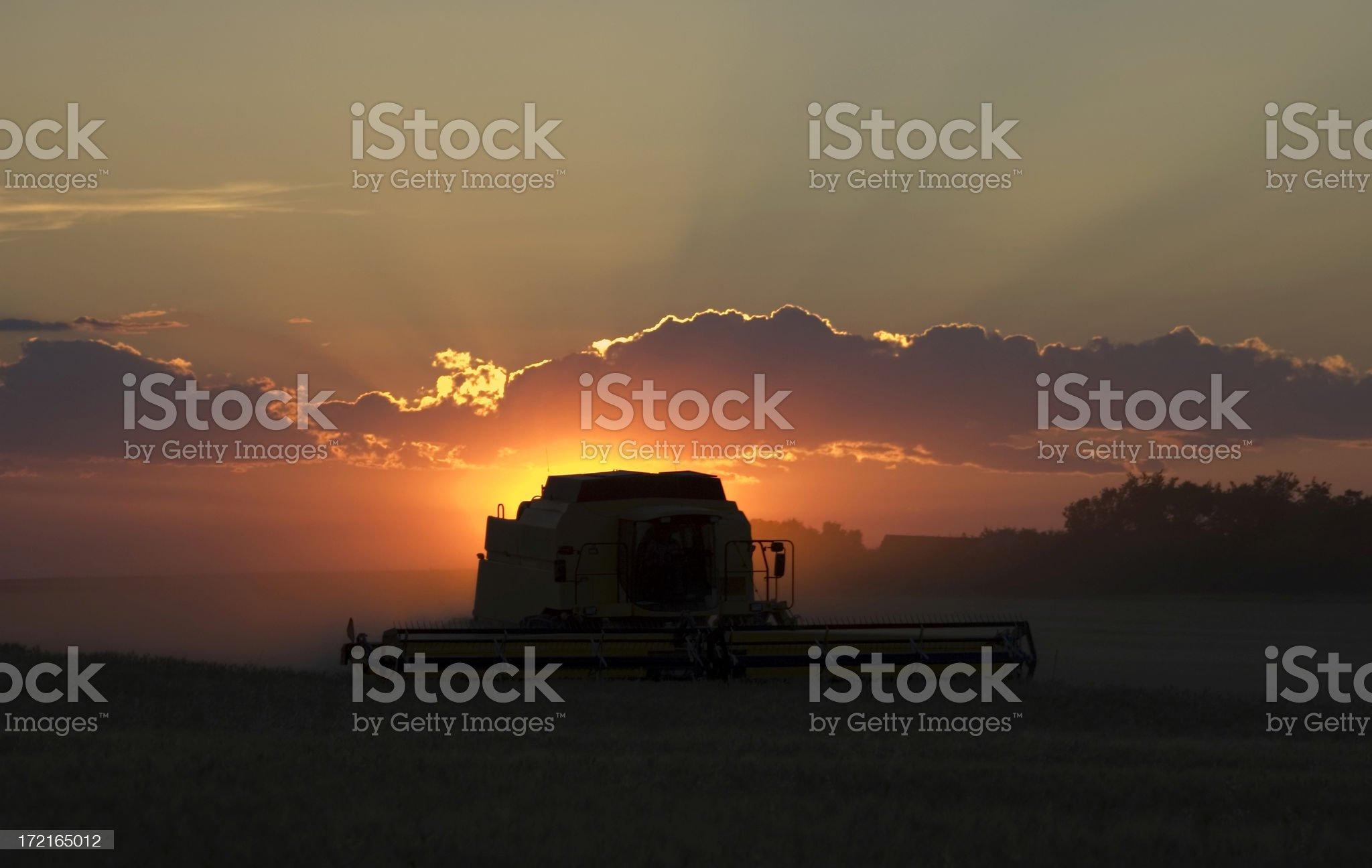 Harvest Scenic royalty-free stock photo