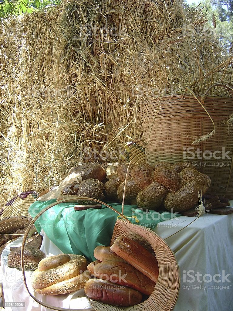 Harvest theme stock photo