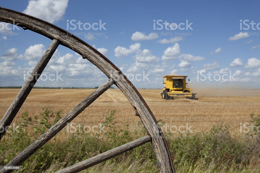 Harvest Time royalty-free stock photo