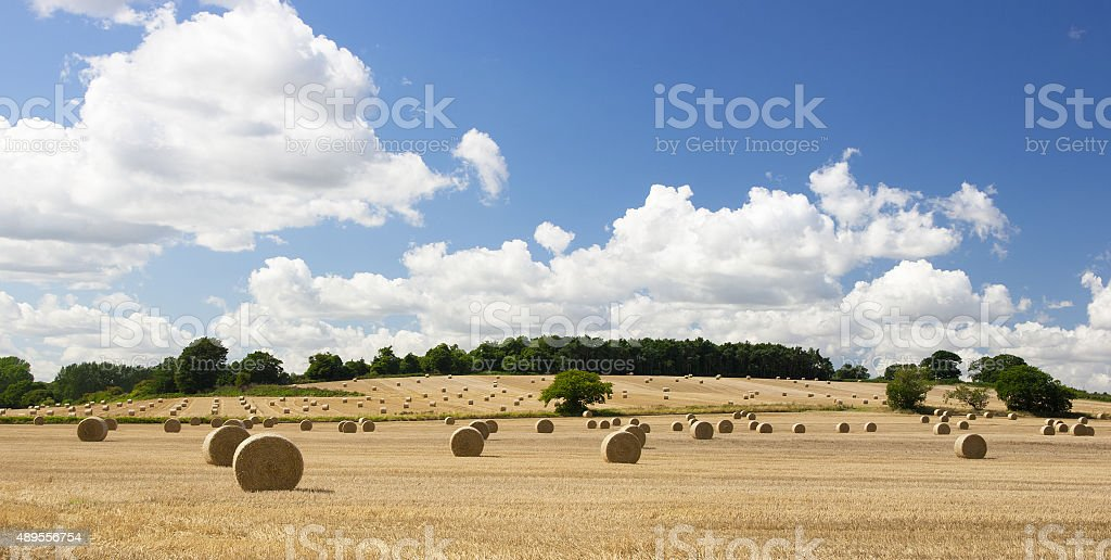 Harvested fields and straw bales, Wherstead, Ipswich, Suffolk stock photo